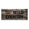 98.3 Wild Country